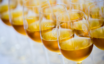 SAUTERNES-GLASSES