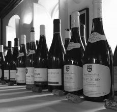 2017 Cambridge Wine Tasting at Jesus College
